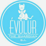 Evolur Solutions
